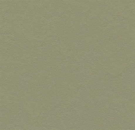 Forbo Marmoleum Click (Rosemary Green 30x30cm 333355)